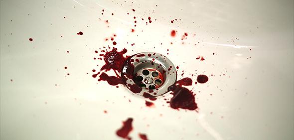 sangre_foto